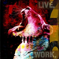 Tiger | live work create